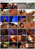 Playboy Wet and Wild VII: Hot Holidays (1995)