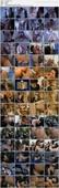 Bose Madchen #17 (2001) DVDRip