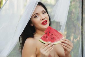 Black Fox - Watermelon  r6rspb5gb2.jpg