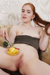 Jia Lissa - Yellow Rose  i6rtrdcjl4.jpg