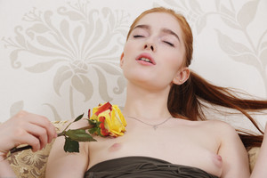 Jia Lissa - Yellow Rose  w6rtrdecly.jpg