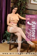 Charlie Rose Set 8293 - 5600px - 81X o6o3jm7ztc.jpg