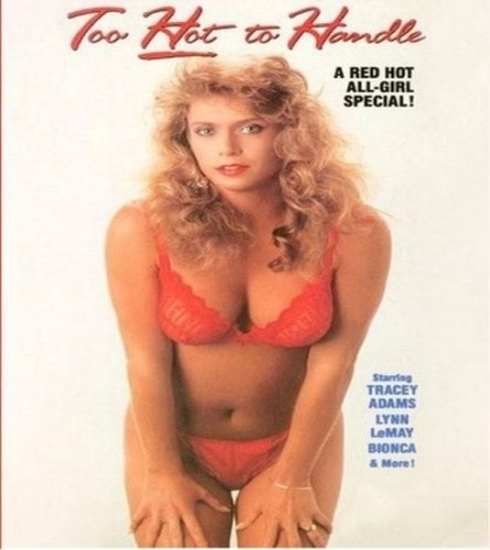 Too Hot To Handle (1990)