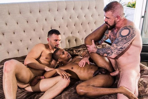 NoirMale - Double Checkmate (Jacen Zhu, Colby Tucker & Rocco Steele)